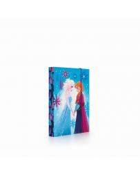 Box na sešity A5 Frozen